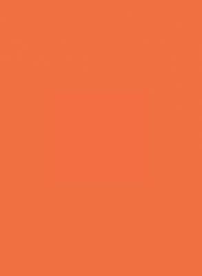 300Г Оранжевый