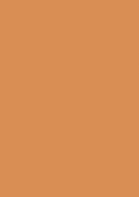 U303 Оранжевый