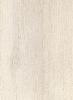 218Т Северное дерево белое