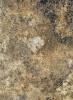 412М Античный Маскарелло